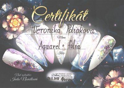 2018_certifikat_2